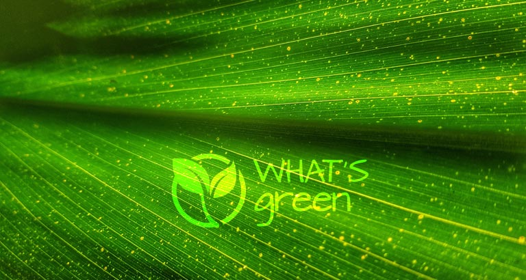 What's Green - December 2019