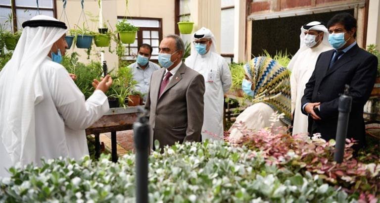 One million seedlings of summer flowers produced in Bahrain